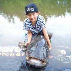 Маленький рыбак, - большой сом