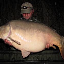 21 кг